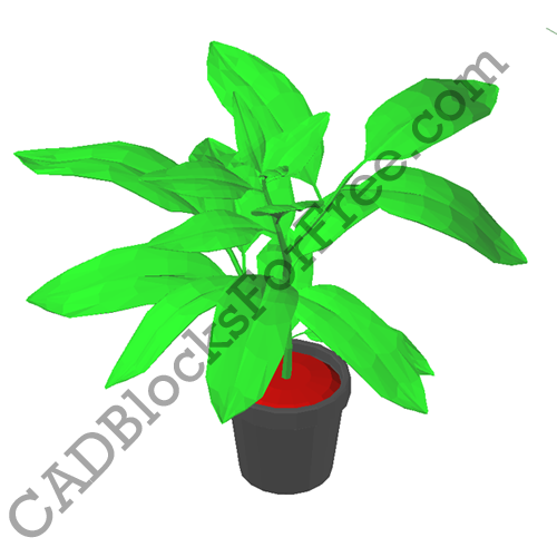 Plant with Pot